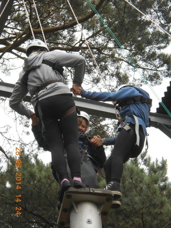 The Adventure Rope Course: Leap of Faith