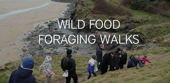 Bedruthan Hotel & Spa: Join us for our Foraging Walks