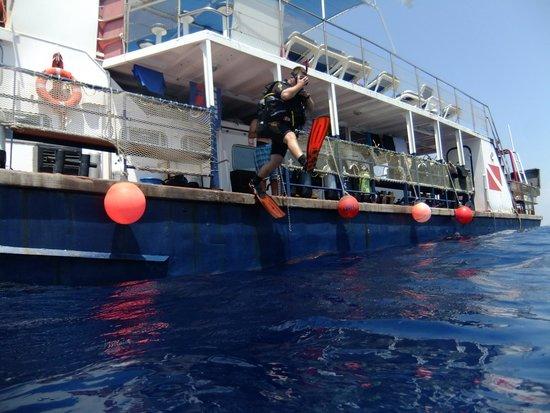DGR Scuba Diving: В предвкушении погружения
