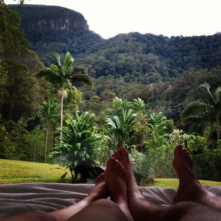 Crystal Creek Rainforest Retreat : Not a bad view from bed! Springbrook moutain view lodge