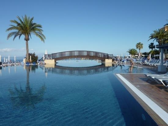 Bahia Principe Tenerife: infinity pool view