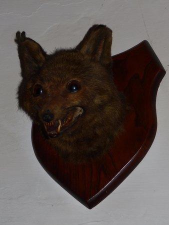 Hole in t'Wall: Fox?