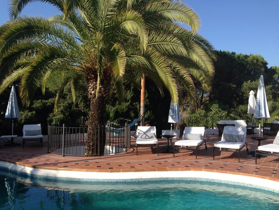 Jardines De La Reina Boutique Bed & Breakfast : Patio with swimming pool