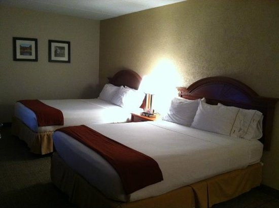 Comfort Inn Madison - Downtown : Guest room