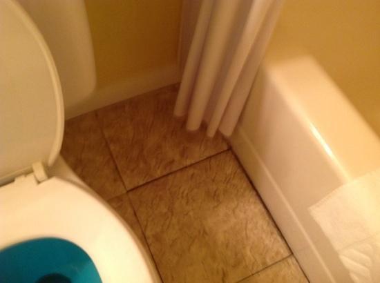 The Grand Beach Inn : bathroom floor