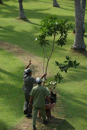 Candi Beach Resort & Spa: Freundliche Gärtner