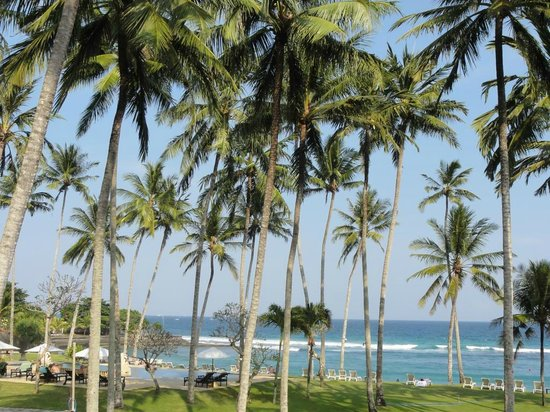 Candi Beach Resort & Spa: Palmen älter als das Hotel