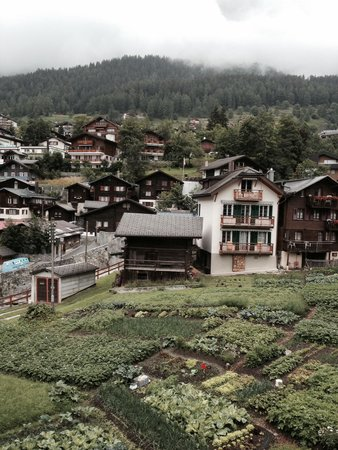 Hotel Les Sources des Alpes : Leukerbad