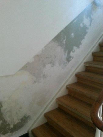 Drei Platanen Haus: Treppenaufgang