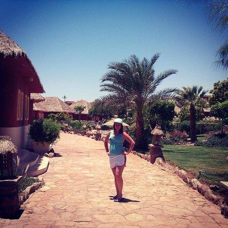Laguna Vista Beach Resort: дорожка между бунгалами