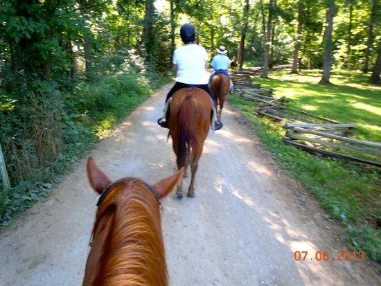 Confederate Trails of Gettysburg: General Lee's trail?