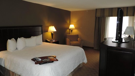 Hampton Inn Port Huron: Zimmer