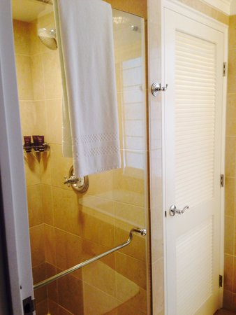 The Ritz-Carlton, Philadelphia: Shower