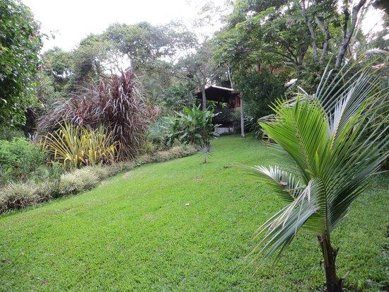 Tacacori EcoLodge : Jardin