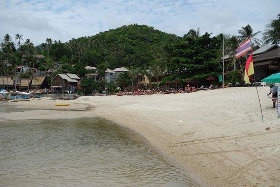 Buri Rasa Koh Phangan: feiner heller Sand...