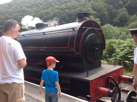 Gwili Railway: One of the steam trains