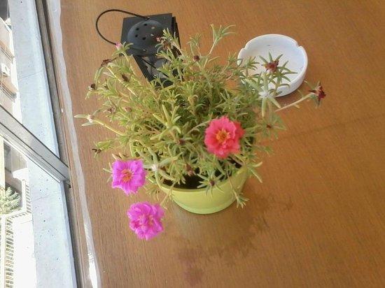 Acropolis Ami Boutique Hotel: настоящие цветы на столиках