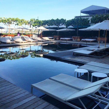 The Modern Honolulu: Early morning poolside.