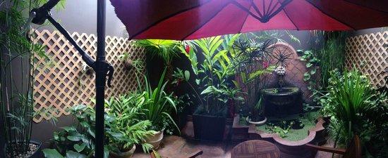Hotel Grano de Oro San Jose: the garden attached to my room