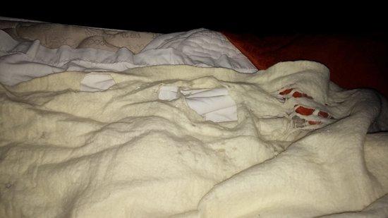 Super 8 Arkadelphia Caddo Valley Area : holes in blankets