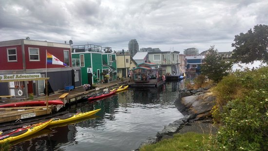 Coast Victoria Hotel & Marina by APA : View of the houseboats at the dock