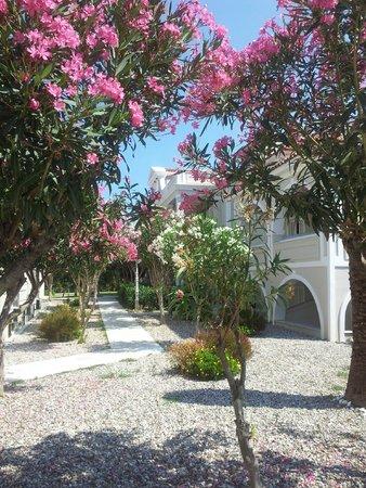 Klelia Beach Hotel: Binnentuin