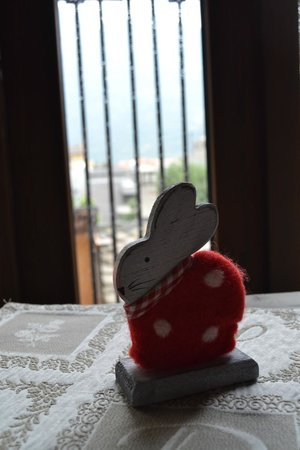 La Meizon de Sara: Mount Emilius Rabbit Details