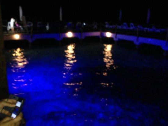 Decameron Aquarium: Visao Noturna