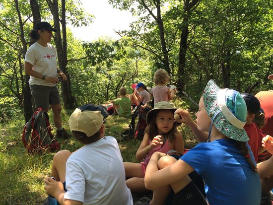 Elizabeth Lee, Outdoor Guide -  Tours: Stopping for a picnic on Cheney Mountain. The children are passing around a gall we discovered a