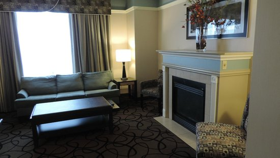 Hampton Inn & Suites Buffalo Downtown: Kamin