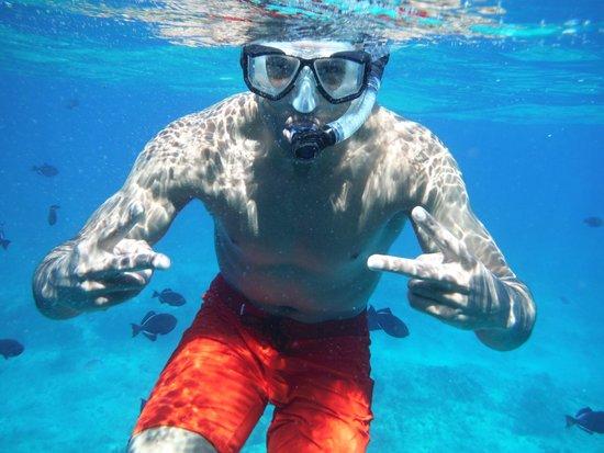 Island Vibes Tours : Snorkeling