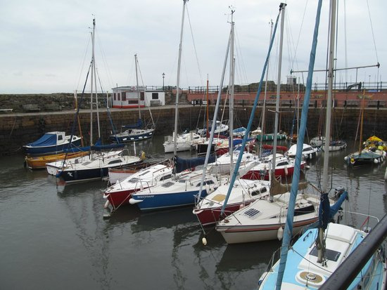 Local Eyes Tours: By the Sea, North Berwick