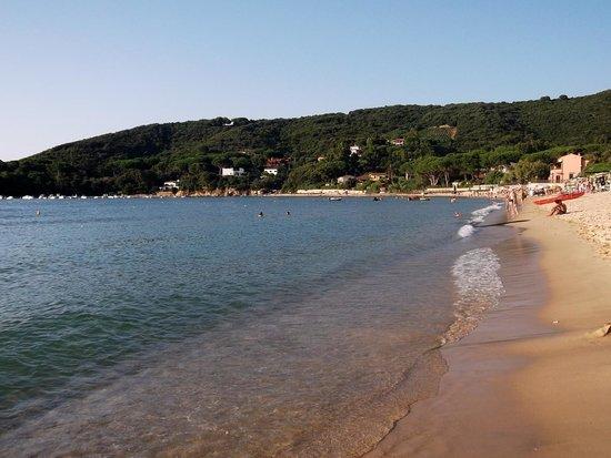 Hotel la perla del golfo: Spiaggia di Procchio