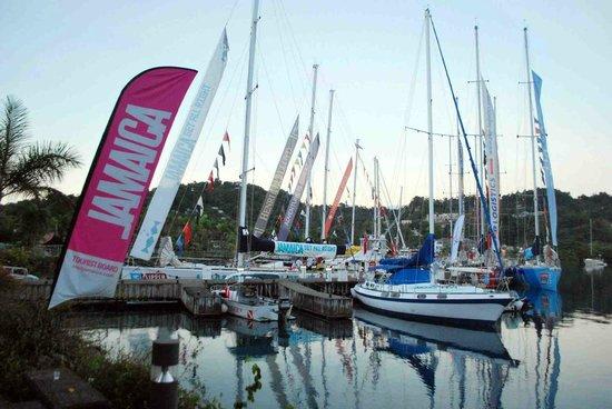Errol Flynn Marina: Marina Dock