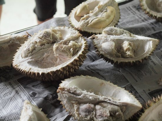 The Kebun: Durian: yummy!