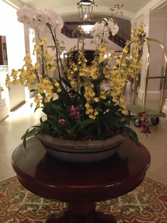 Belmond Hotel das Cataratas: Decoração com Orquídeas