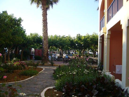 Mare Monte Beach Hotel : vue de la chambre RdC