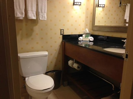 Hilton Chicago O'Hare Airport: small bathroom
