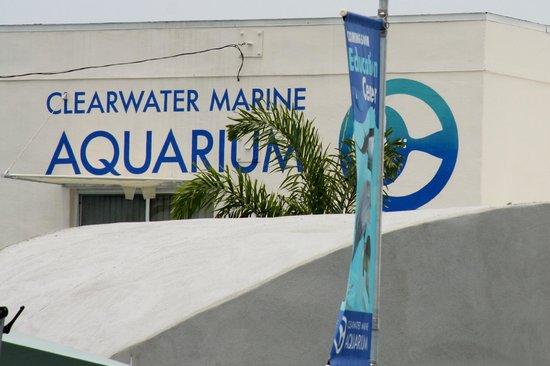 Clearwater Marine Aquarium Sign