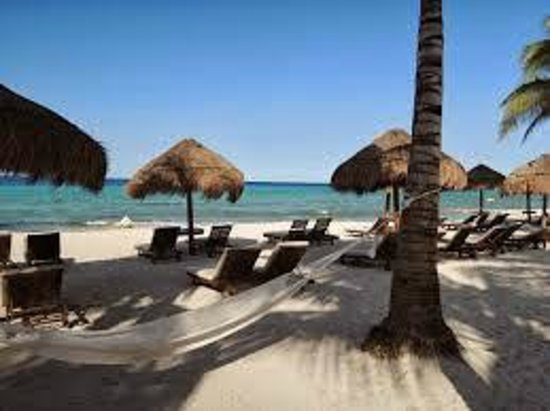 Secrets Aura Cozumel : Preferred Club beach for Preferred Guests only
