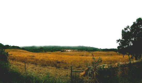 Herdade da Matinha: The view