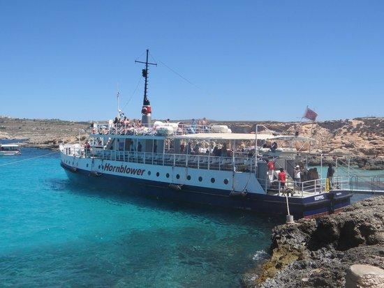 Hornblower Cruises : Hornblower i Blue Lagoon