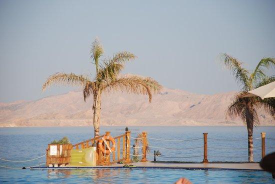 Cleopatra Luxury Resort: Piscina, mare e Tiran una cartolina costantemente sotto i vostri occhi.
