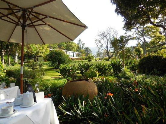 Quinta da Casa Branca: vue du restaurant du midi