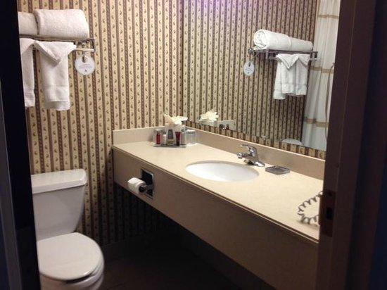 DFW Airport Marriott South: standard small hotel bathroom