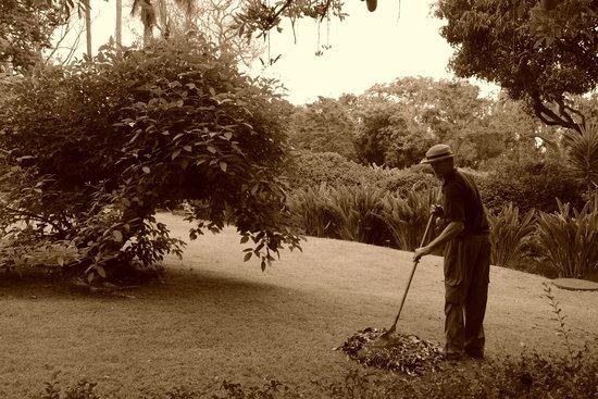 Quinta da Casa Branca: des jardins sans cesse entretenus