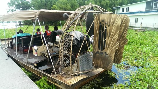 Atchafalaya Basin Landing & Marina- Swamp Tours: The Airboat
