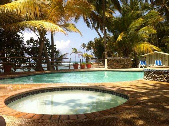 Caribe Playa Beach Hotel : the real way to relax in the sun... huumm yeah baby!!!