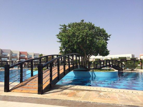 SUNRISE Grand Select Crystal Bay Resort: Poolside