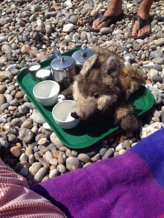 写真The Sea Shanty Beach Cafe枚